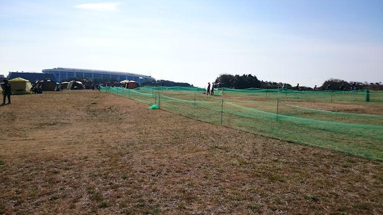 芝生にネット